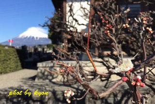 富士山0120-(1)_s.jpg